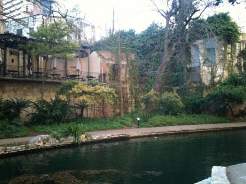 rivergreen